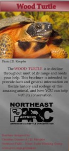 WoodTurtle_coverpage