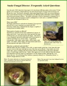 Snake_Fungal_Disease_Snapshot